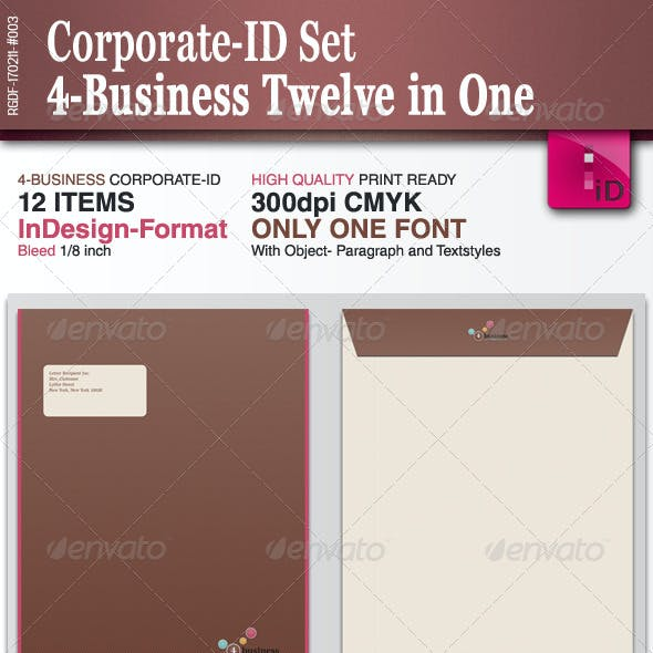 Corporate-ID Set 4-Business Twelve in One