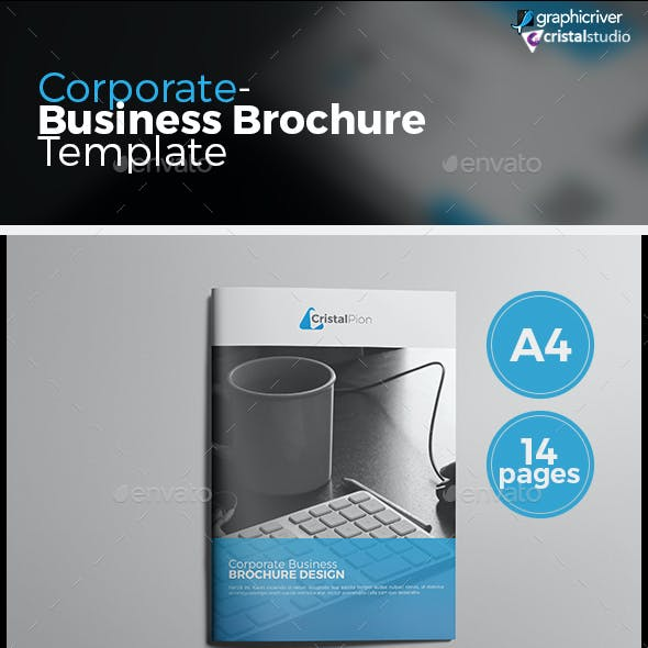 Corporate Business Catalog/Brochure
