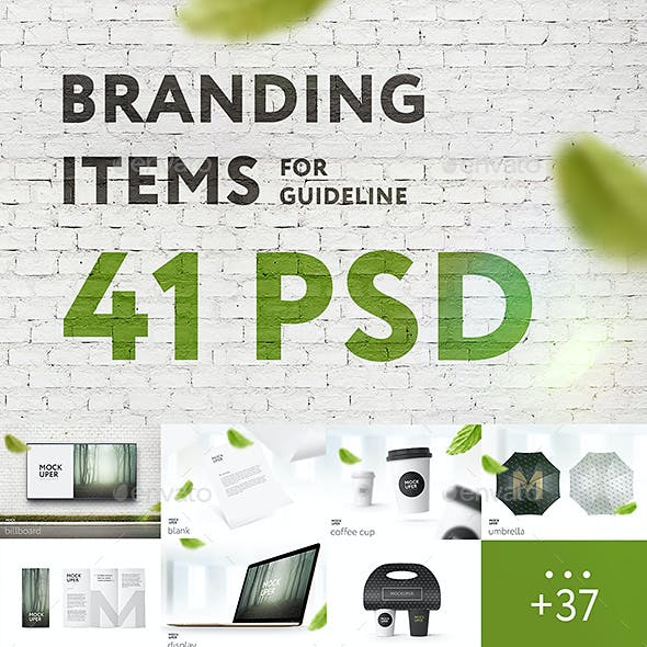 Branding Items Mock-up for guidelines. 41 PSD