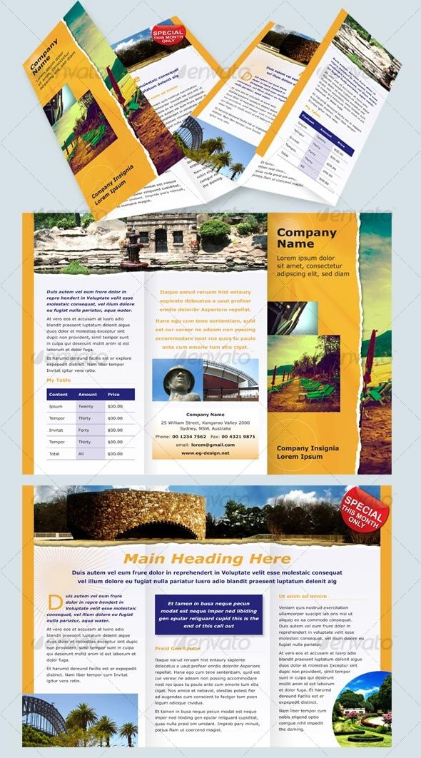 6 page DL Modern Brochure - Corporate Brochures