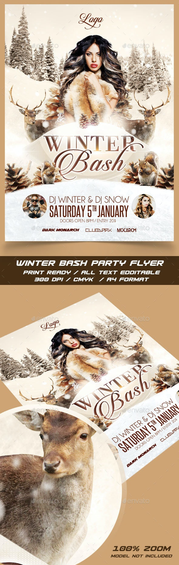 Winter Bash Party Flyer - Events Flyers