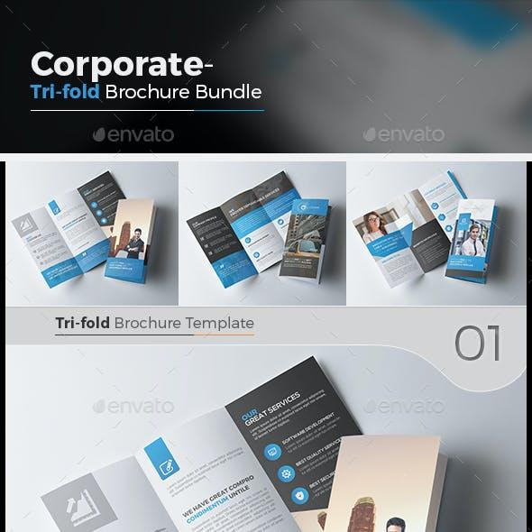 3 Tri Fold Brochure Bundle