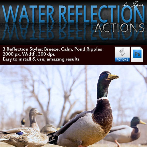 Water Reflection Actions