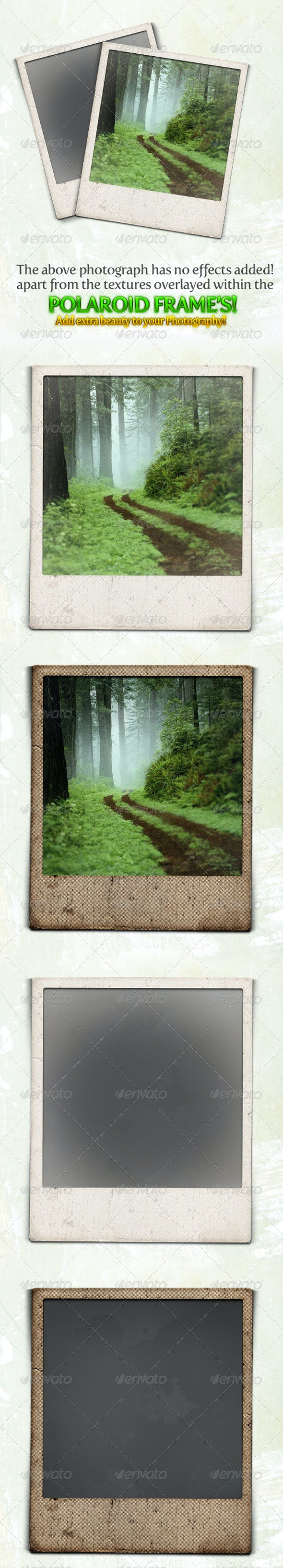 Gritty and Modern Polaroid Photo Frames - Nature Photo Templates