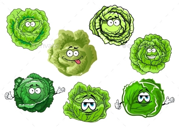 Cartoon Crunchy Green Cabbage Vegetables - Food Objects
