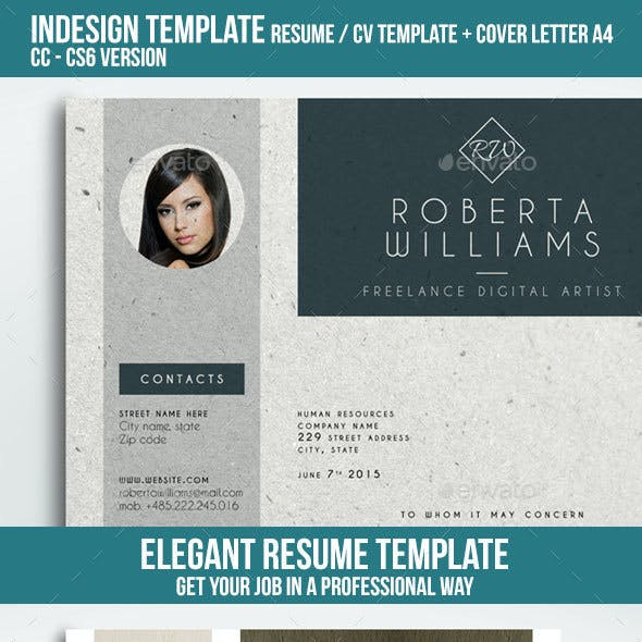 Professional Resume CV Indesign Template