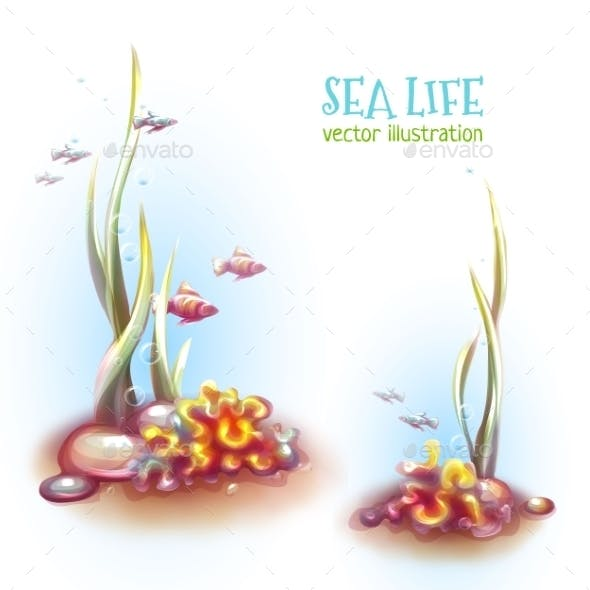 Vector Illustration Of Decorative Corals