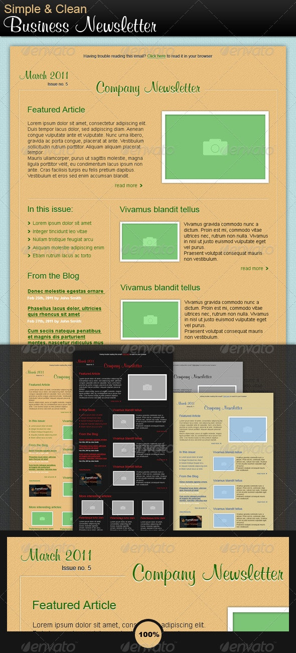 Simple & Clean Newsletter - E-newsletters Web Elements