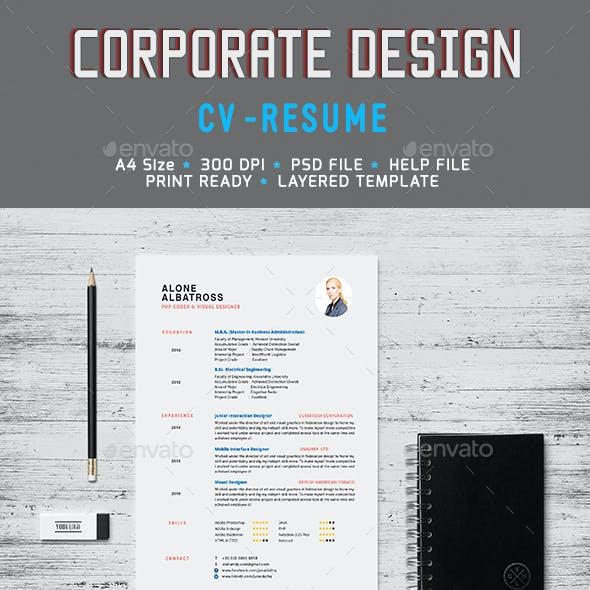 Simple Clean Resume CV