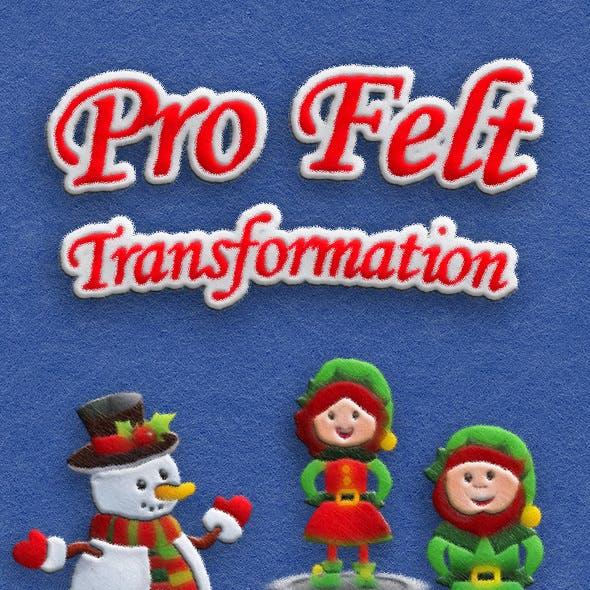 Pro Felt Transformation