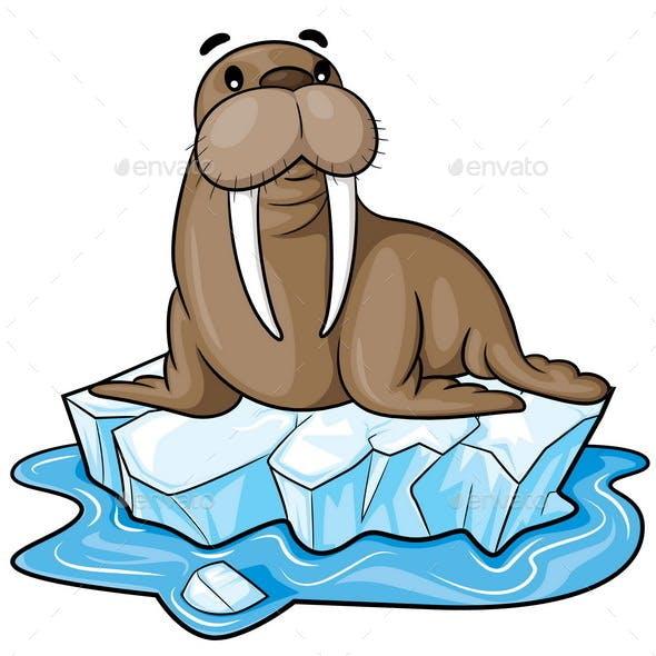 Walrus Cartoon