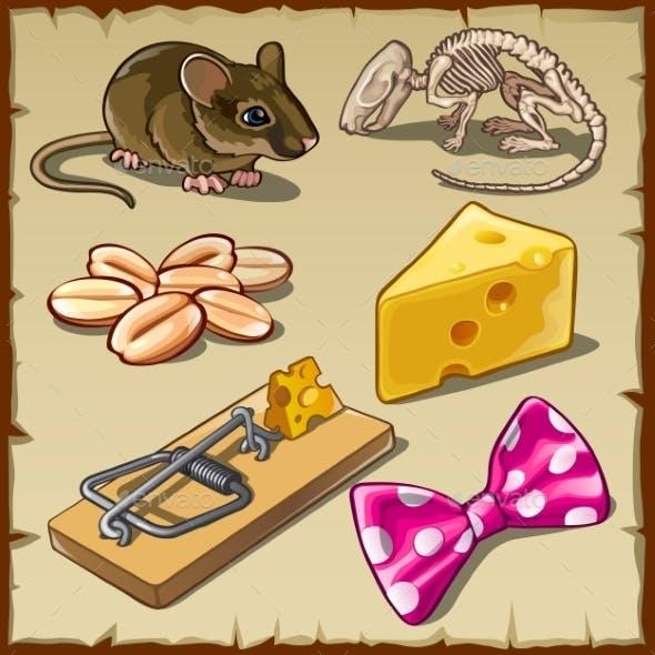 Mouse Set and Symbols