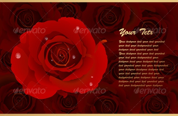 Romantic Card With Many Red Rose - Backgrounds Decorative