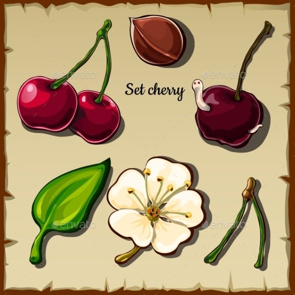 Cherry Icon Set, Berry, Flower And More, Six Items