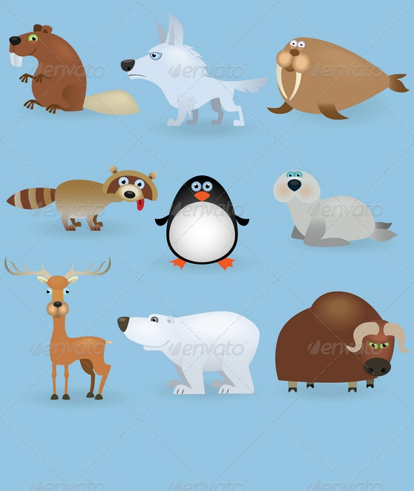Wild Animals Set (North) - Animals Characters