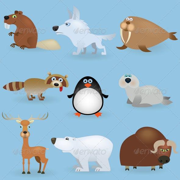 Wild Animals Set (North)