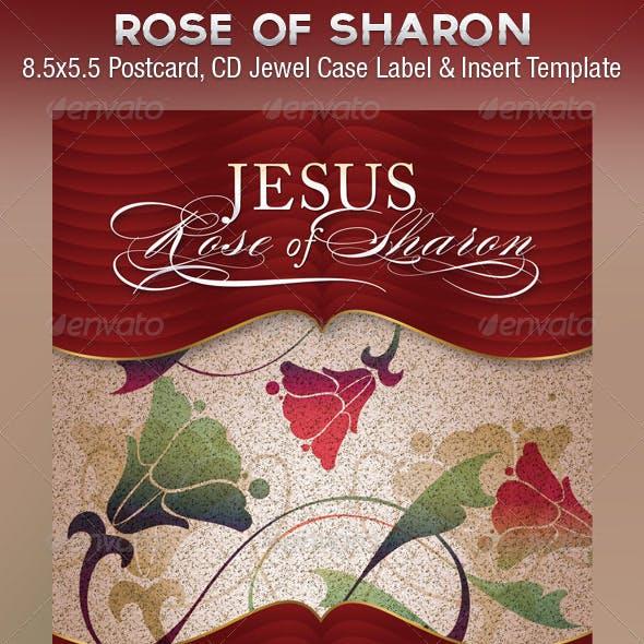 Jesus Church Flyer CD Template