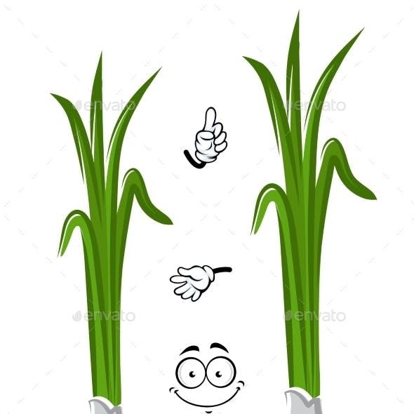 Cartoon Healthful Green Onion Vegetable