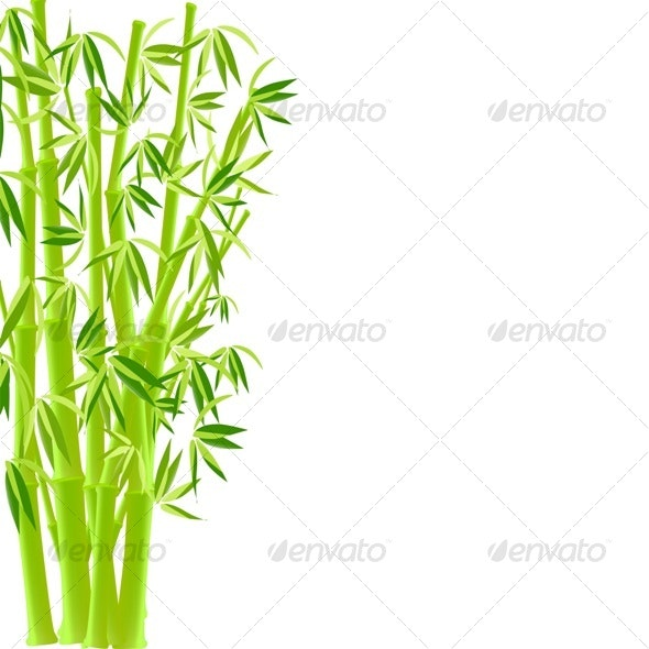 vector illustration of bamboo - Flowers & Plants Nature