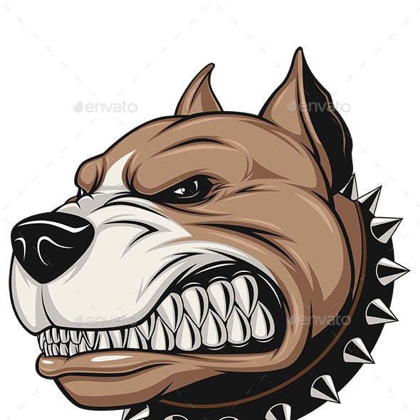 Angry Dog