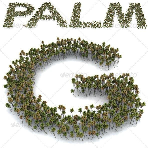 Palm Letters