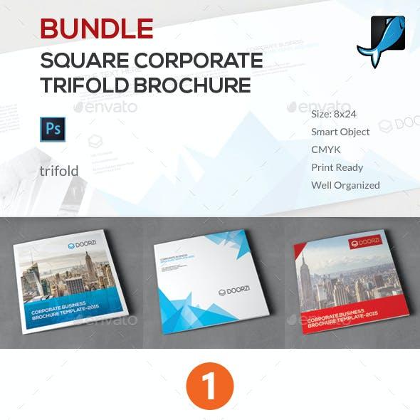 Square Corporate Trifold Brochure Bundle
