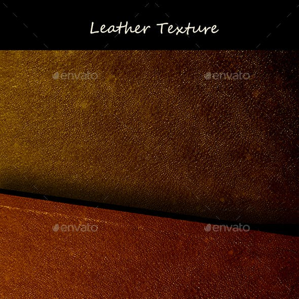 Leather Texture 0258