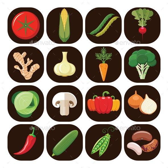 Set of Different Kinds of Vegetables