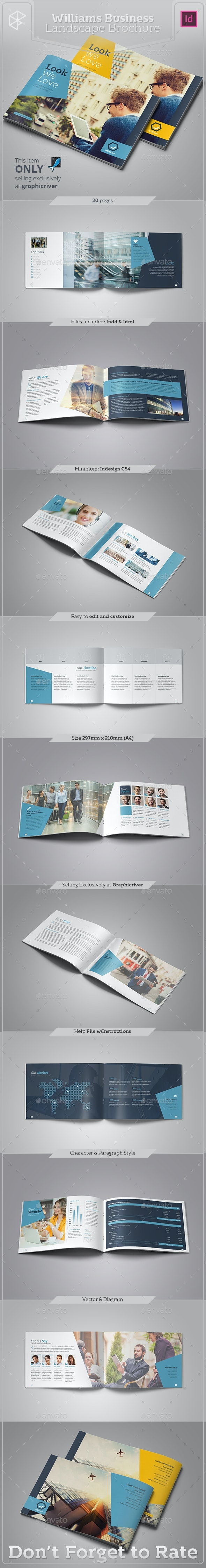 Williams Business Landscape Brochure - Corporate Brochures