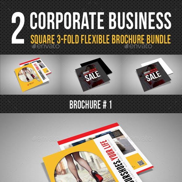 2 Product Catalogue Square 3-Fold Brochure Bundle