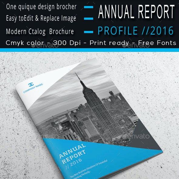 Annual Report Profile