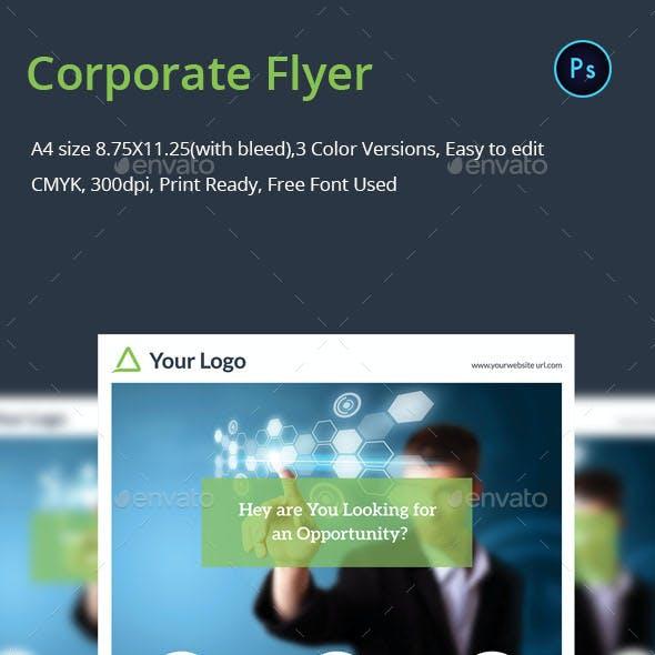 Simplicity Corporate Flyer