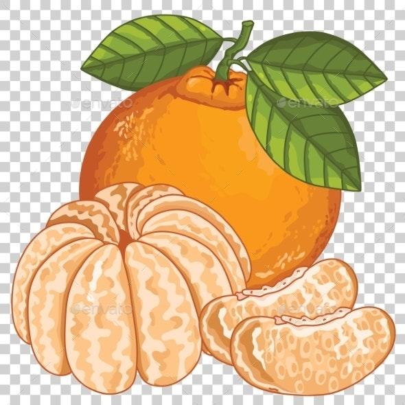Mandarin Isolated - Food Objects