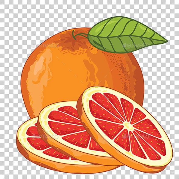 Grapefruit Isolated, Vector.