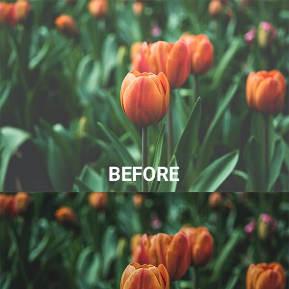 Noise Cleaner - The most popular & the best easy way to reduce noise from your hazy photos.