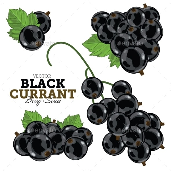 Black Currant Set - Food Objects