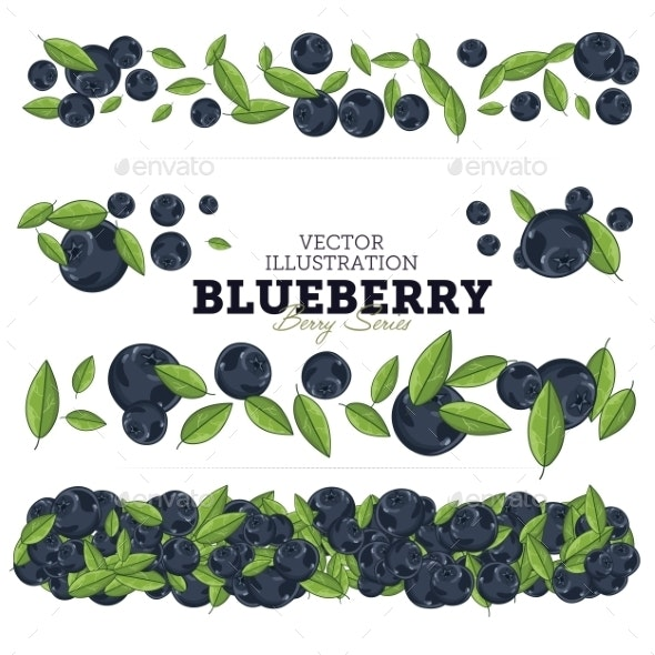Blueberry Set - Food Objects