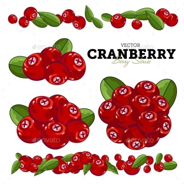 Cranberry Set, Vector. - Food Objects