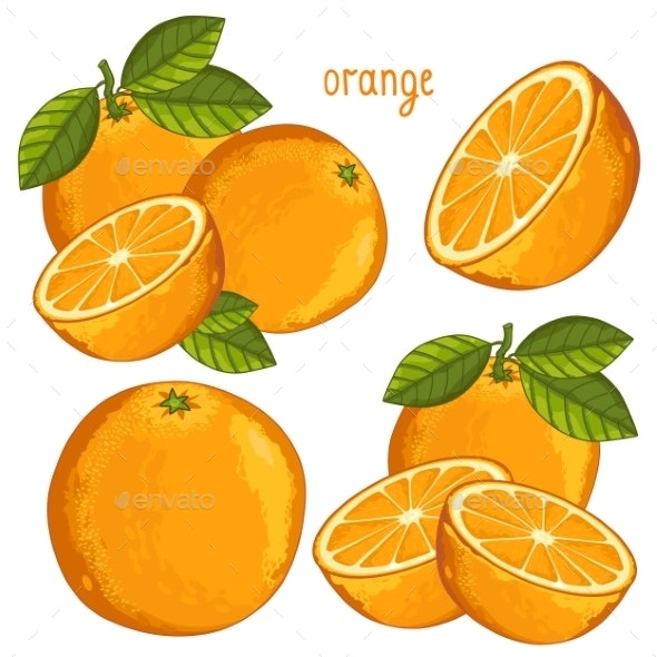 Orange Isolated - Food Objects