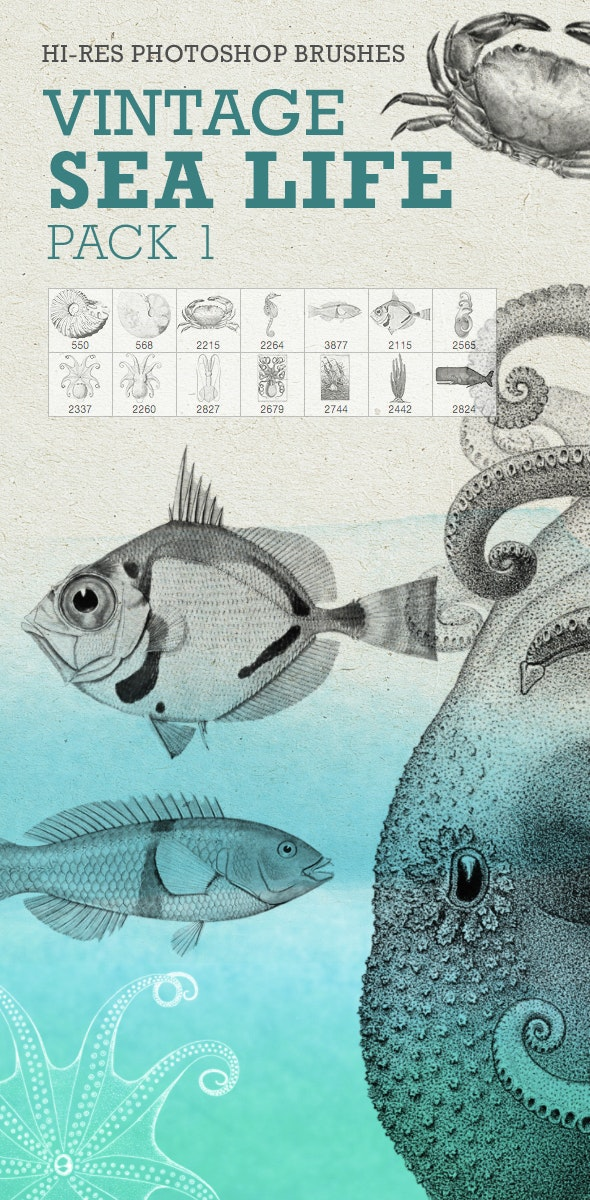 Vintage Sea Life Pack1 - Brushes Photoshop