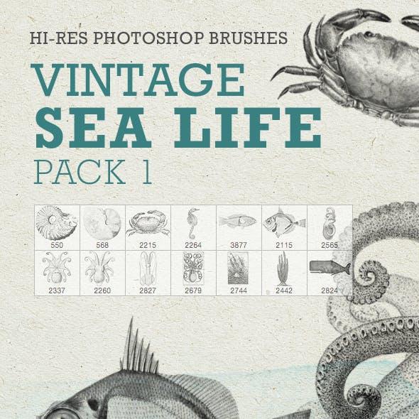 Vintage Sea Life Pack1