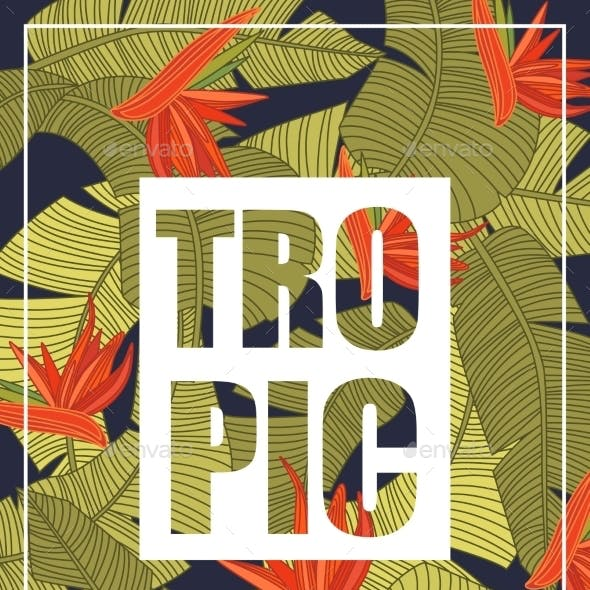 Tropical Background With Lettering