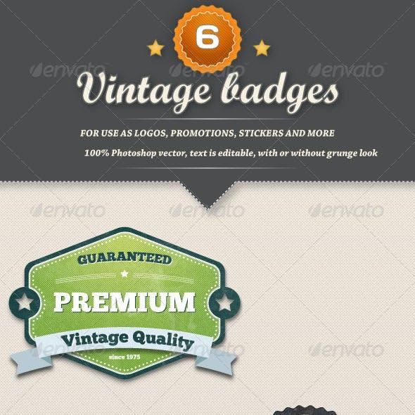 6 Retro Vintage Badges