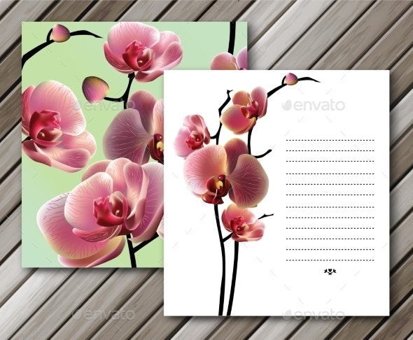 Orchid Cards for Your Design Background - Flowers & Plants Nature