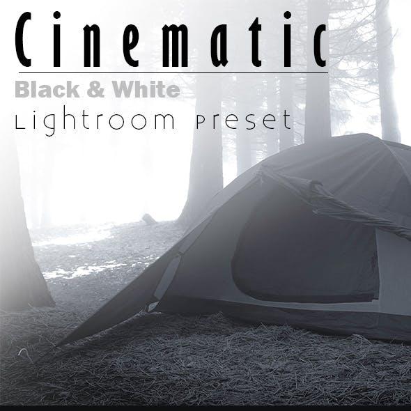Chinematic B&W Lightroom Preset