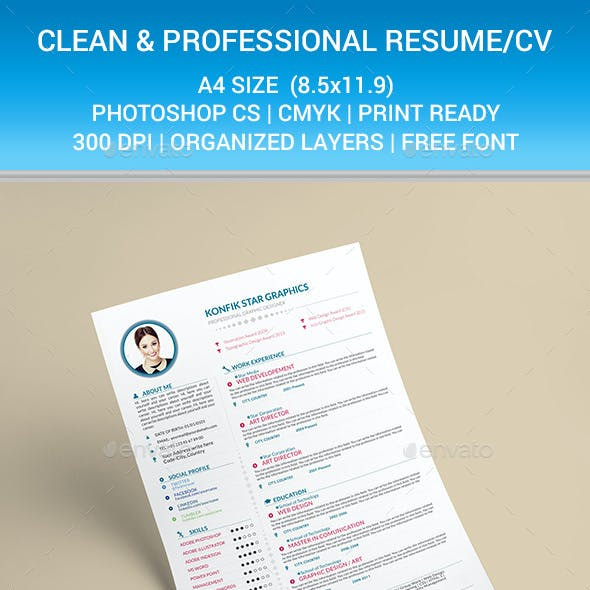 Clean and Professional Resume CV