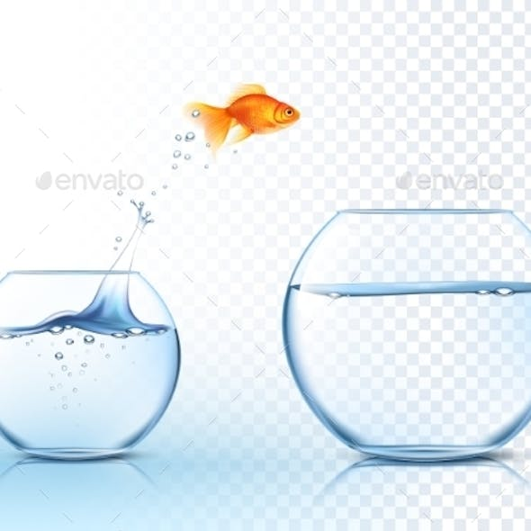 Goldfish Jumps Out of Water Bowl