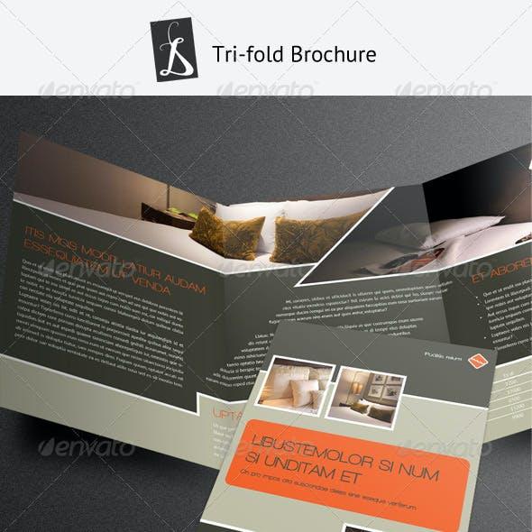 Tri-fold Brochure 6