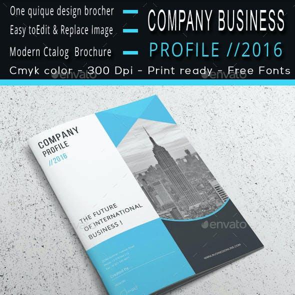Company Business Profile //2016