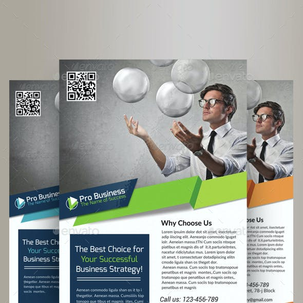 Business Solutions Consultant Flyer Template